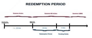 Redemption Period